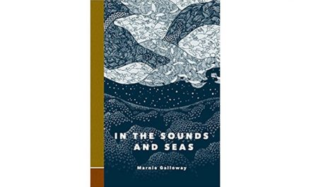 IN THE SOUNDS AND THE SEAS by Marnie Galloway